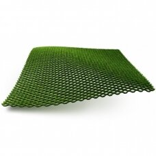 Žolė hibridinė Grimsholm 1x1 m